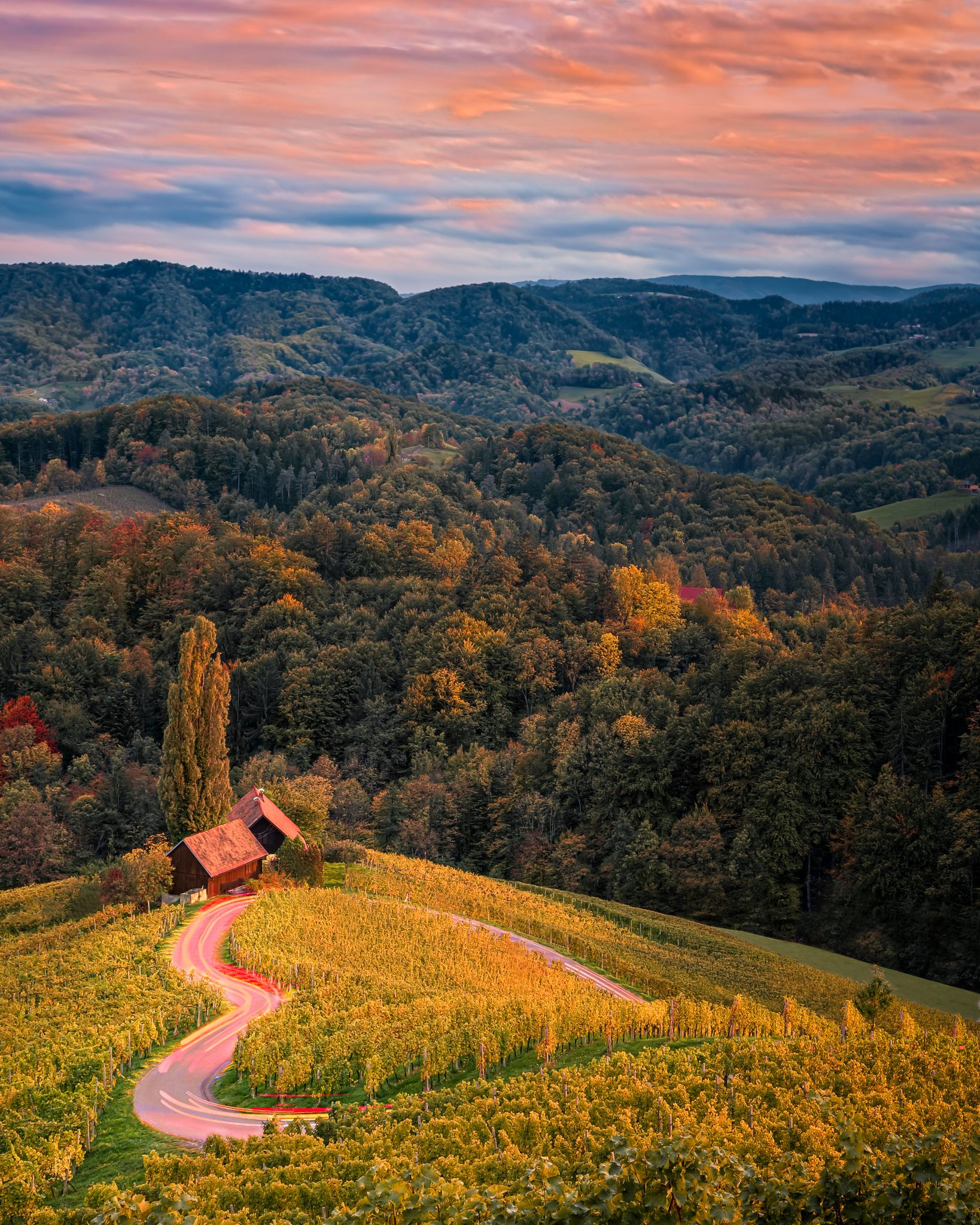 Although I love to travel I am also happy when I return home to Slovenia. As you can see, a lovely heart is weaved into our land...  The photo was made on a wonderful Dreisiebner vineyard in Zgornja Kungota. If you are ever in the vicinity, I highly recommend you to take the time and meet with friendly owners.